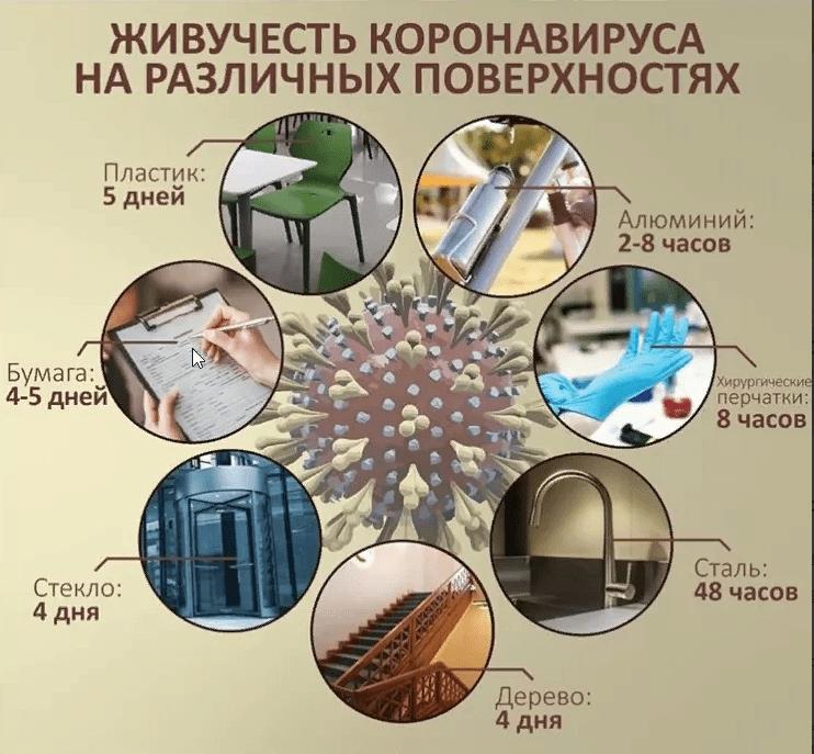 продолжительность жизни коронавируса